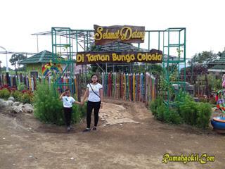 Taman Bunga Celosia Bandungan Jawa Tengah