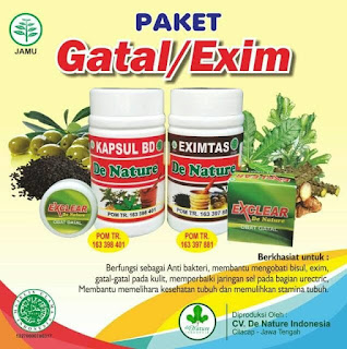 Rekomendasi Obat Gatal Menahun Herbal Paling Ampuh, obat eksim kering yang manjur di apotik, obat gatal menahun di apotik