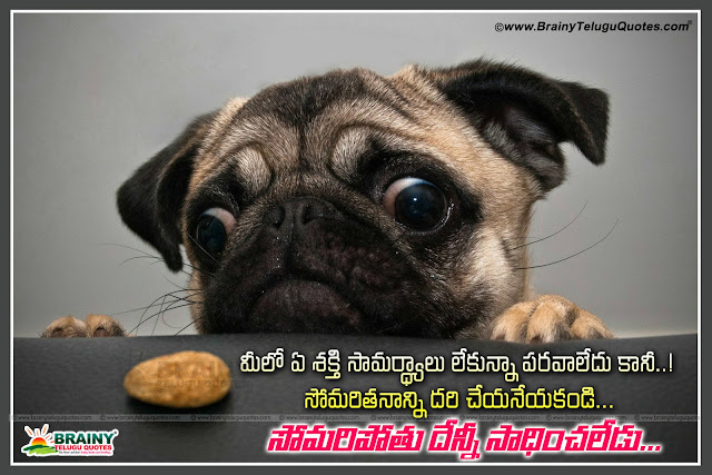 Here is Beautiful Telugu Life Inspirational Quotes with images,Best Telugu Quotes,Inspirational Telugu Quotes,Life Quotes with images,Best Telugu Inspirational Quotes with images,Beautiful Telugu Life Inspirational Quotes with images Best Telugu Quotes - Inspirational Telugu Quotes - Life Quotes with images - Best Telugu Inspirational Quotes with images - Best inspirational Quotes - Best Life Quotes -Top telugu quotes