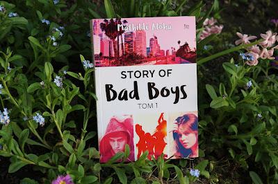 Mathilde Aloha - Story of Bad Boys tom 1