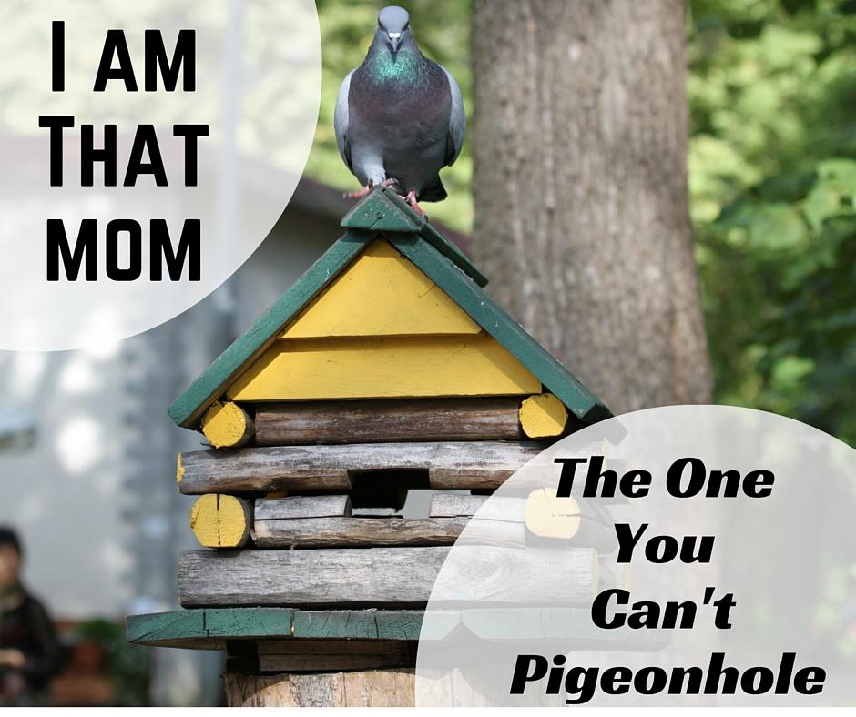 pigeon on bird house