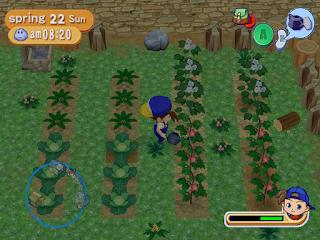 Harvest Moon Game Santai Untuk Menemani Liburanmu