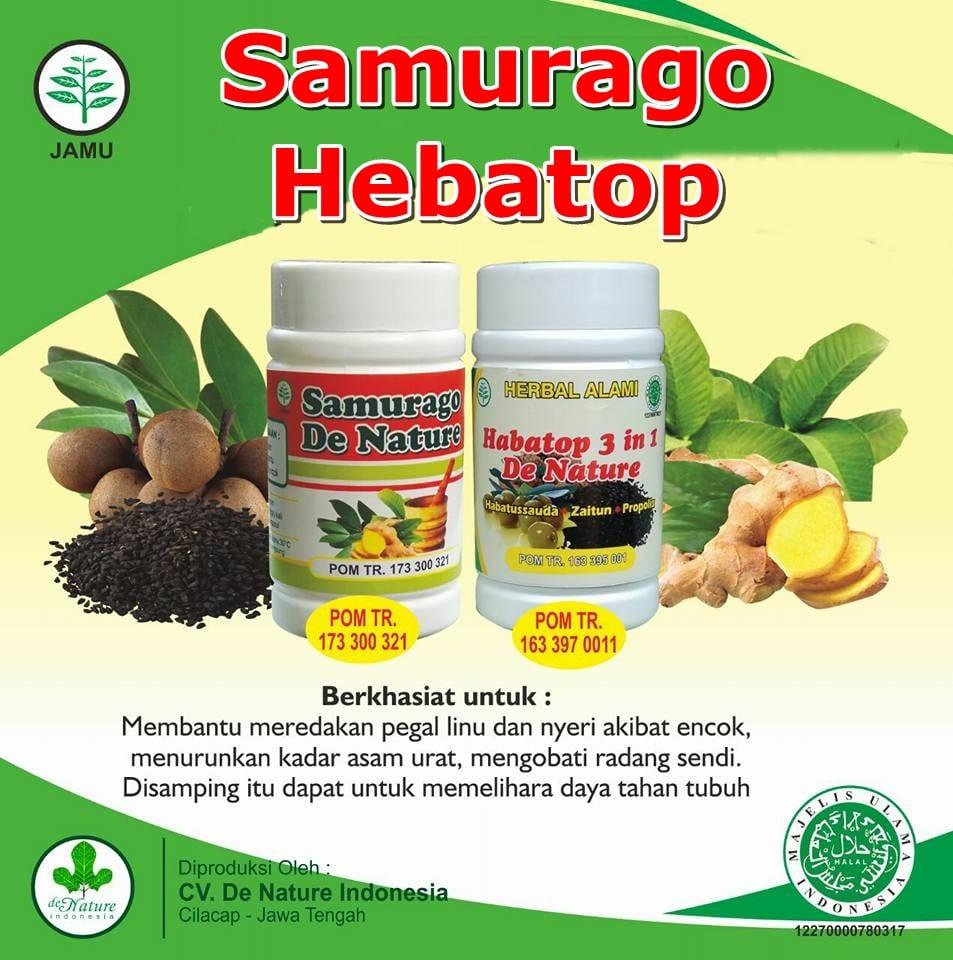 Obat Encok Herbal de Nature Bagus Ampuh