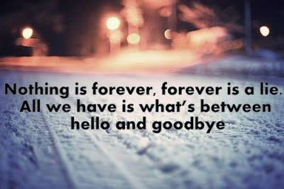 beautiful quotes on life:nothing is forever is a lie, all we have is what's between, hello and goodbye,
