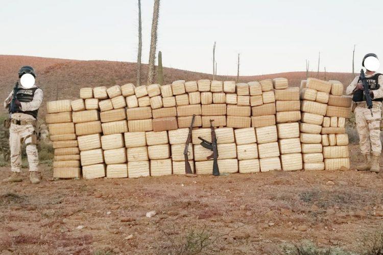 Batallón de Infantería aseguran 900 kilos de marihuana, un AK-47 y un rifle en Cataviña