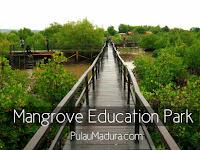 Kesejukan Alam Labuhan Mangrove Education Park Bangkalan Madura