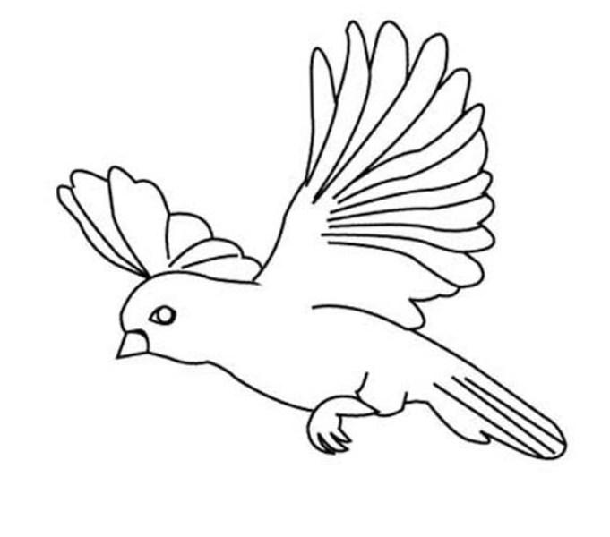 Belajar Mewarnai Gambar Burung Yang Lucu Untuk Anak Belajar Mewarnai