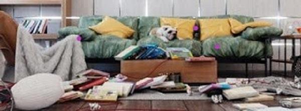 imagem com tudo sobre um sofá, espalhado pelo chão