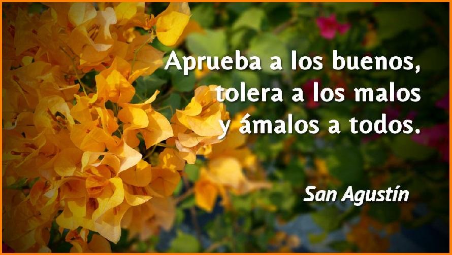 Ashamel Lemagsa 100 Frases De San Agustin Sobre El Amor Y La Fe