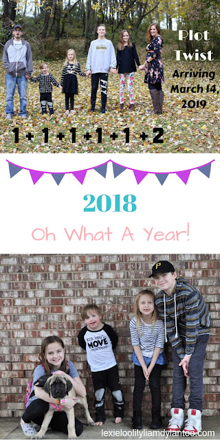 2018 Year In Review! #momblogger #bigfamily #pregnancyannouncement #downsyndrome #parenting #travelwithkids