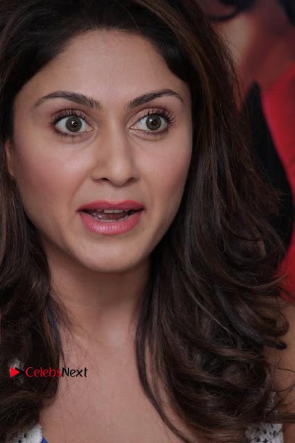 Bollywood Actress Manjari Phadnis Stills in Ripped Jeans at Film Jeena Isi Ka Naam Hai Interview  0001.jpg