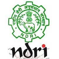 NDRI jobs,latest govt jobs,govt jobs,latest jobs,jobs,karnataka govt jobs,Research Assistant jobs