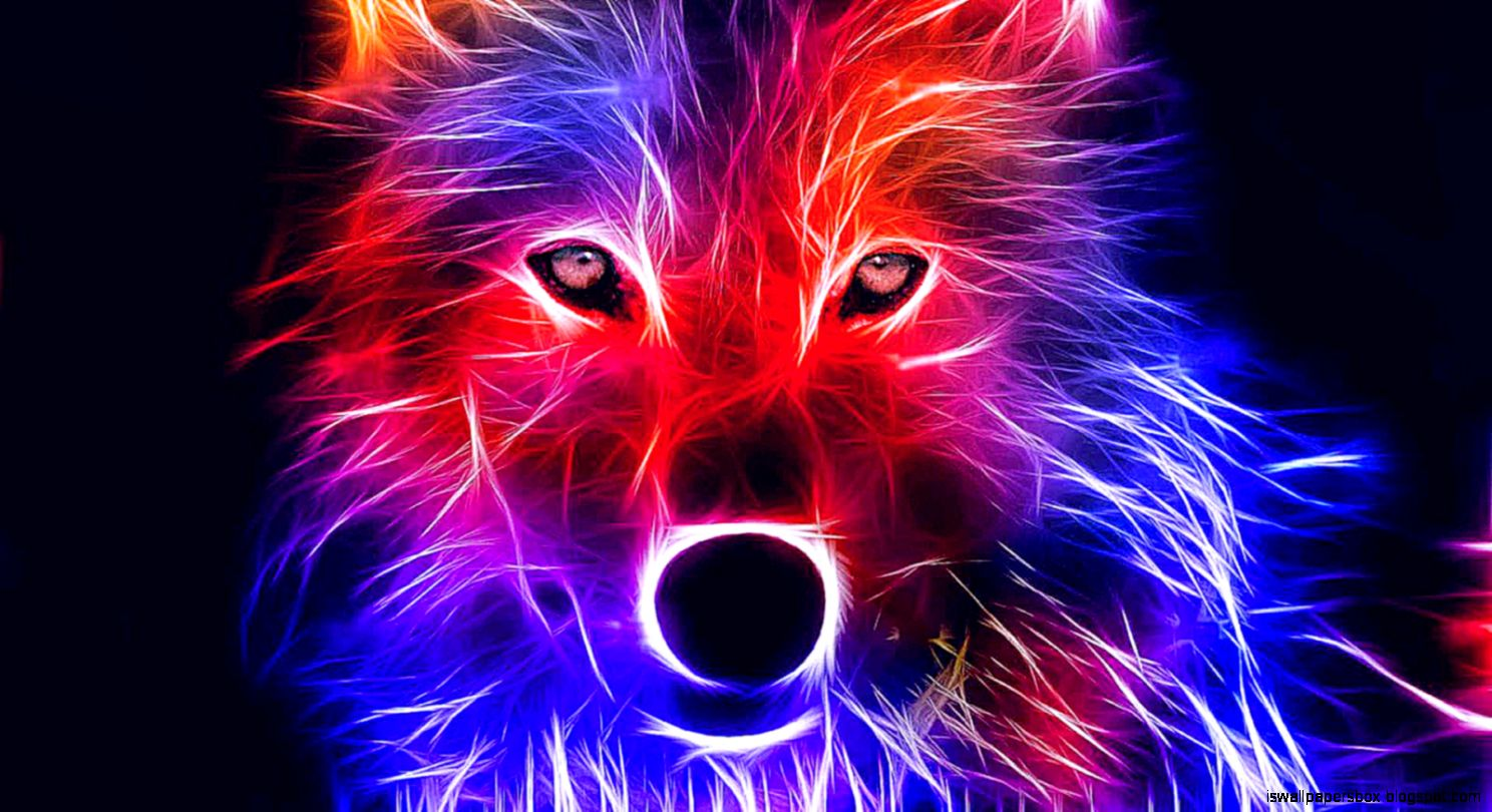 Coole Wolf Bilder Red Wolf Wallpapers Wallpapers Box