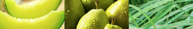 Oficjalne fotografie głównych nut Clean Rain: (od lewej) melon, gruszka i wetiweria