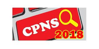 Jumlah Penerimaan CPNS 2018 di Bawah 200 Ribu Orang