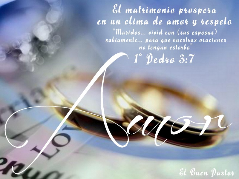 Matrimonio Biblia Versos : Yo soy el buen pastor ° pedro