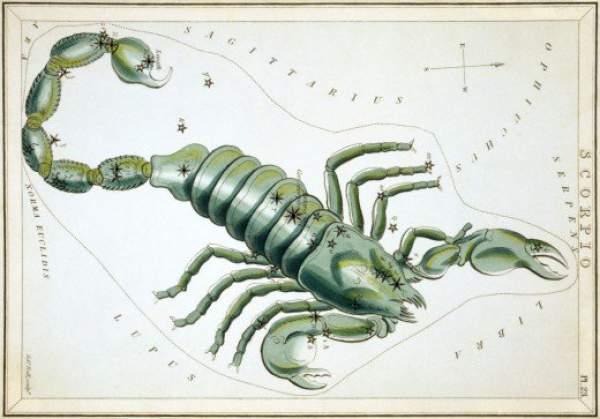 Scorpio Life