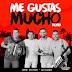 Jorge Celedon Ft. Alkilados — Me Gustas Mucho (Remix)(AAc Plus M4A)