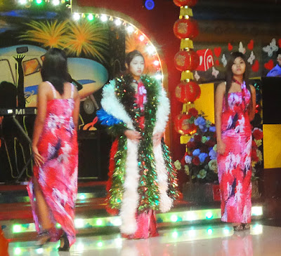 Asian butterflies and myanmar nightlife show girls