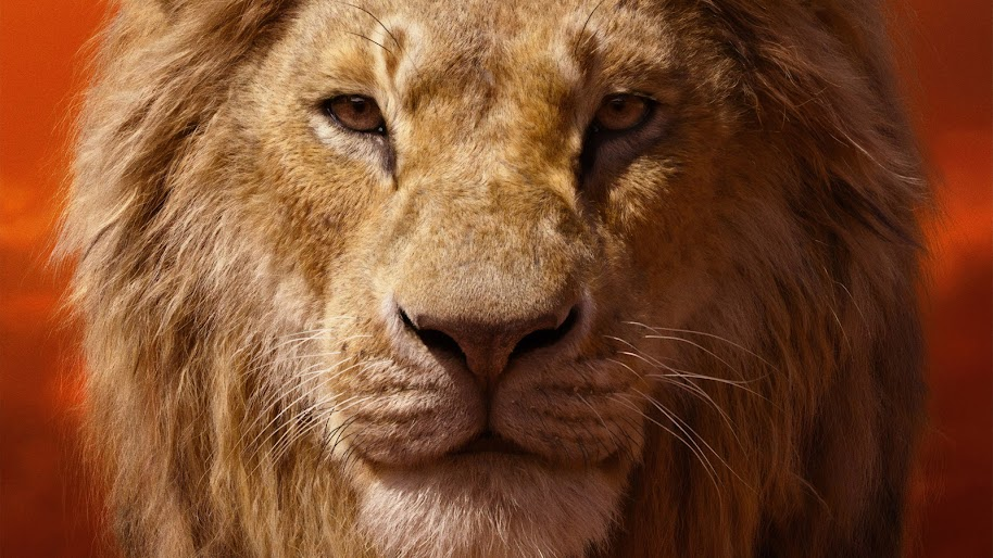 The Lion King 2019 Simba 4k Wallpaper 6