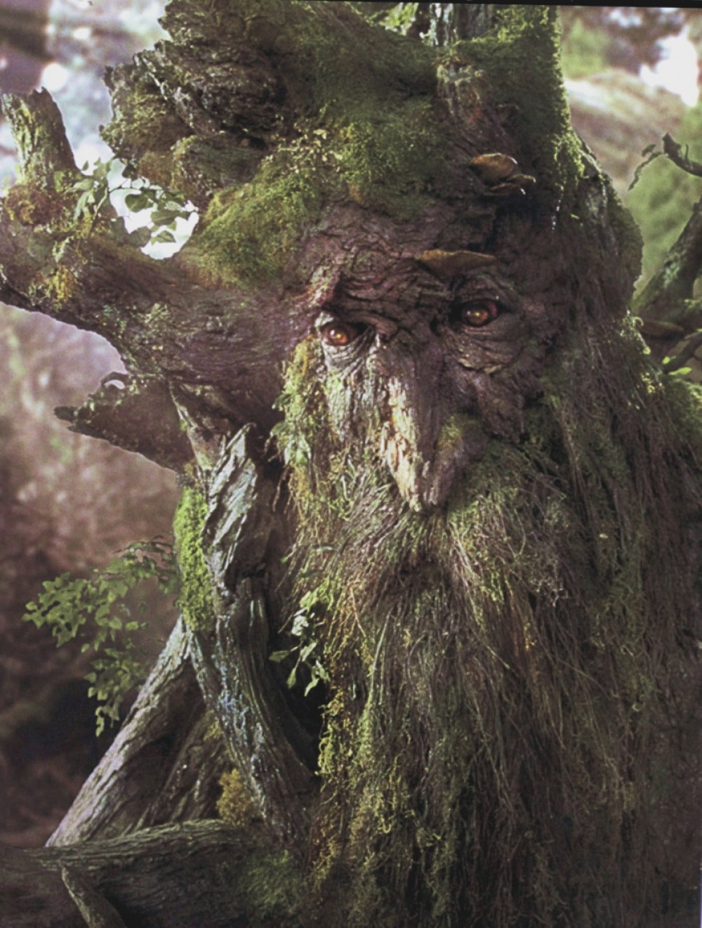 El antro: Treebeard Bust
