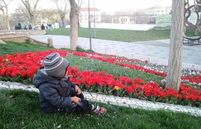 Pengalaman Membuat Visa Keluarga Turki