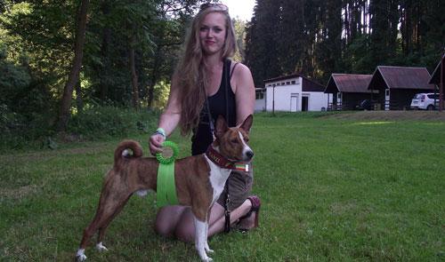 Anjing Basenji yang Tak Bisa Menggonggong