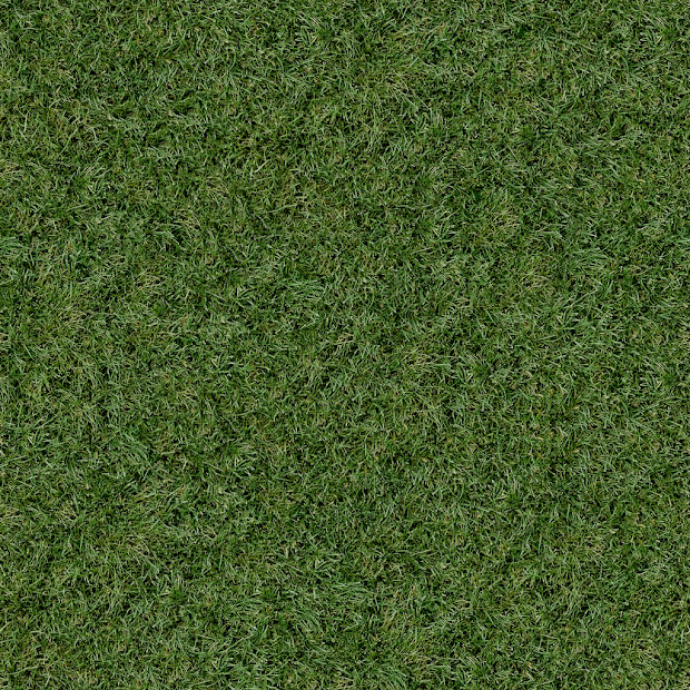 Revit Grass - Year of Clean Water