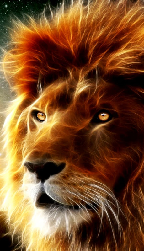 Lion Wallpapers Hd Wallpapers Insert