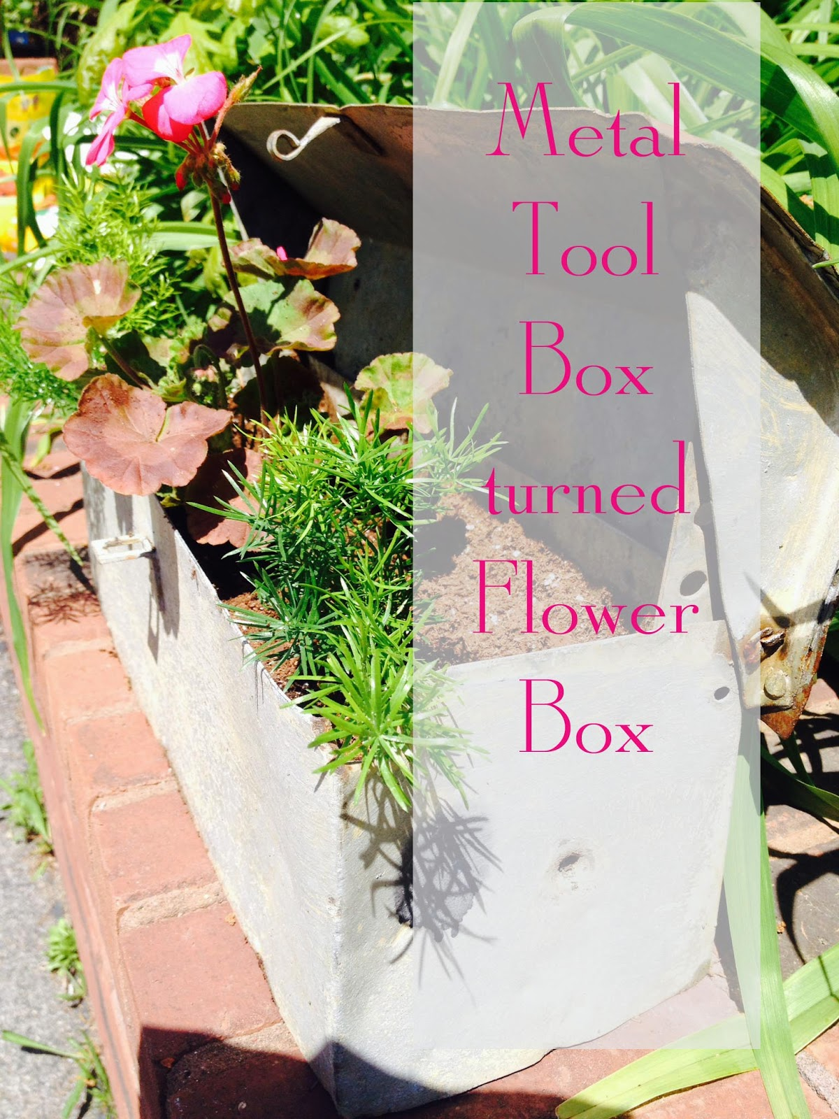 amazing repurpose of metal tool box into flower box