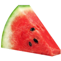 red watermelon slice fruit icons