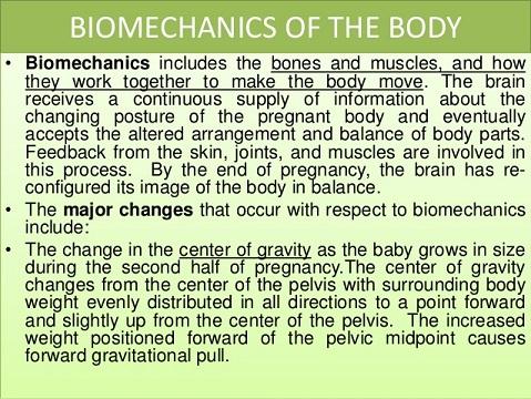 Biomechanics of the Body