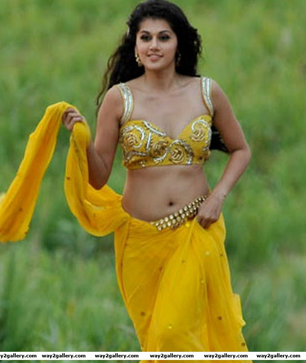 tapsee online unseen hot saree