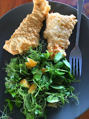 snapper and salad