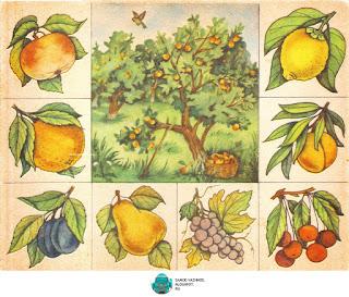 Ботаническое лото игра СССР. Игра иностранный язык СССР.