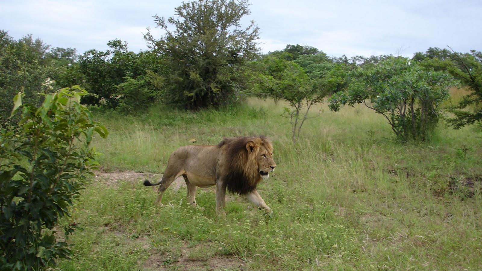 plus belle réserve d'Afrique du Sud