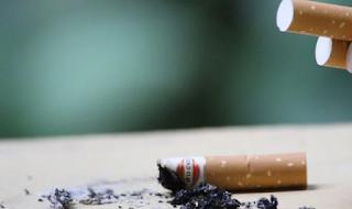 Cara Bersihkan Paru dari Racun Rokok