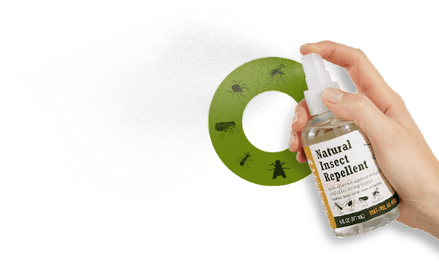 Natural Spray for Insect is a Good Idea