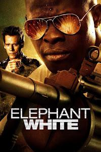 Elephant White Poster