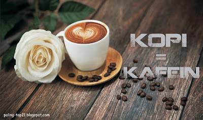 Kopi Mengandung Kafein