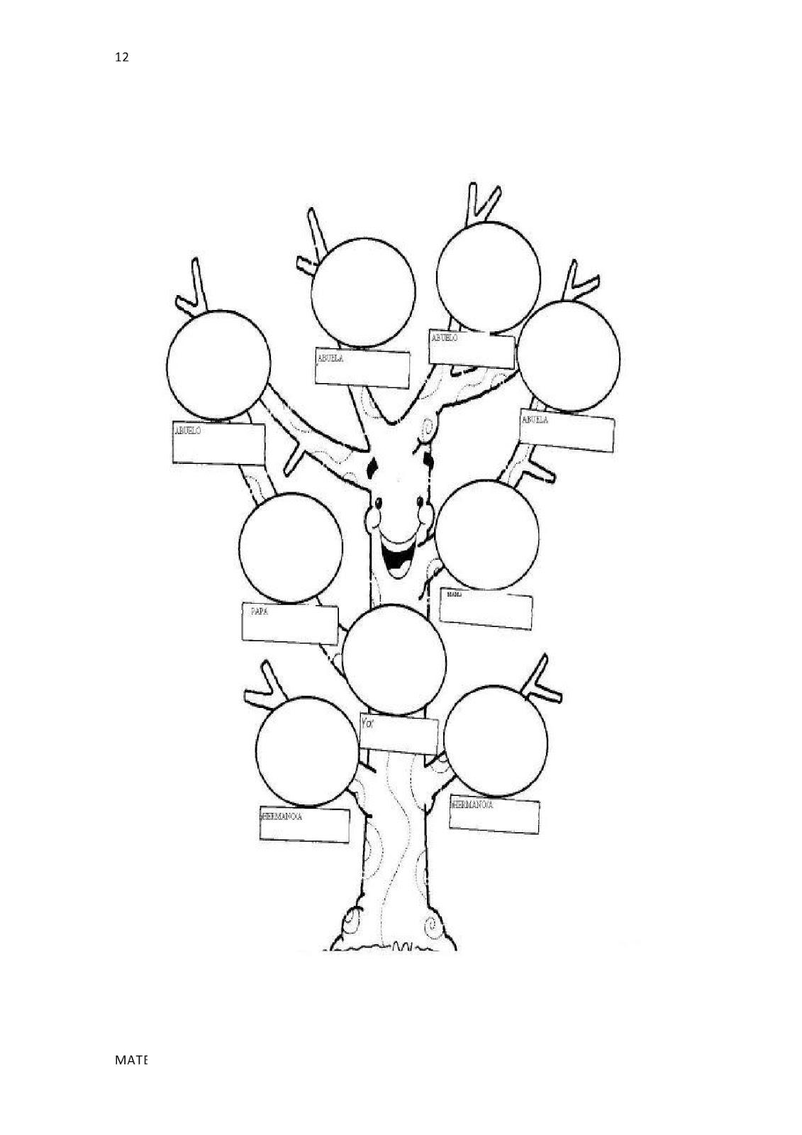 Kids Zone Arbol Genealogico