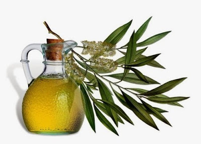 how to remove acne scars with tea tree oil