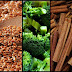 Natural Foods And Spices That  May Help To Effectively Control Blood Sugar And Insulin