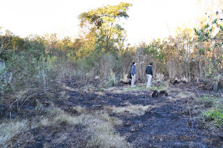 Nuevo incendio en Bosque Alegre