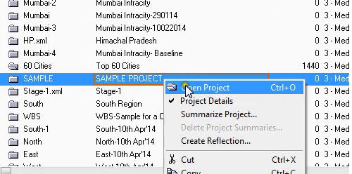 Exporting the Primavera data into excel with same color