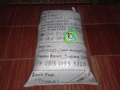 Benih pesanan  UMAR DANI Palembang, Sumsel.  (Setelah Packing)