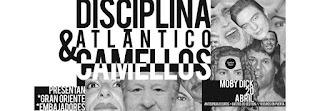 Concierto de Disciplina Atlántico y Camellos en Moby Dick