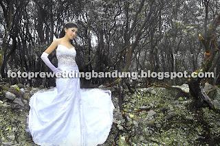 Pre Wedding Eksotik