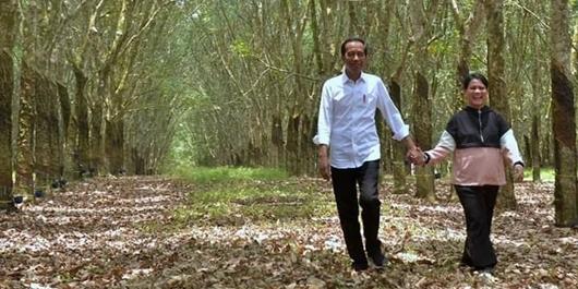 Mesranya Jokowi-Iriana Gandengan di Hutan Karet Sumsel