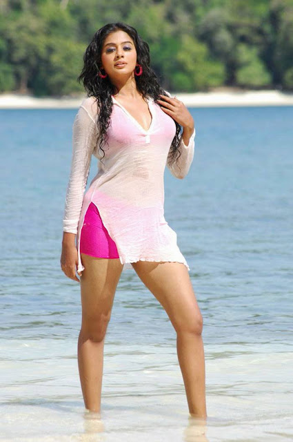 Priyamani Height and Weight and Body Measurements